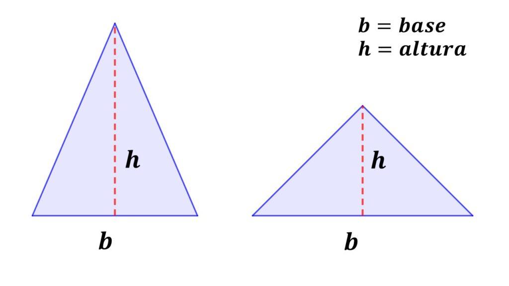 base y altura del triángulo isósceles
