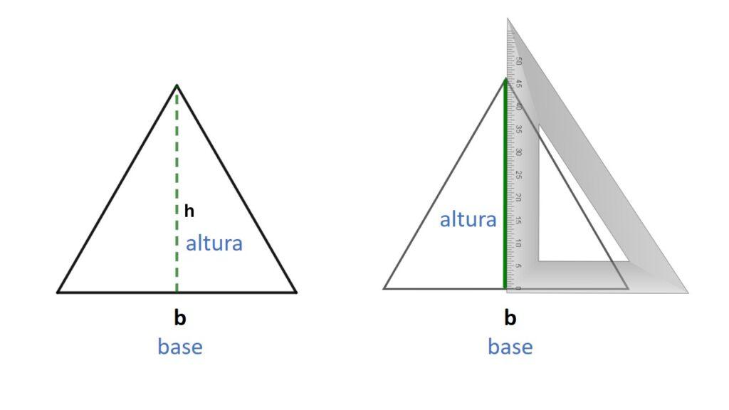 base y altura del triángulo equilátero