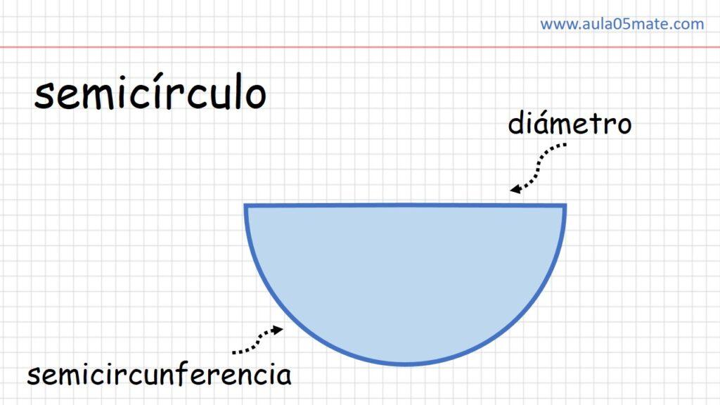 partes del semicirculo