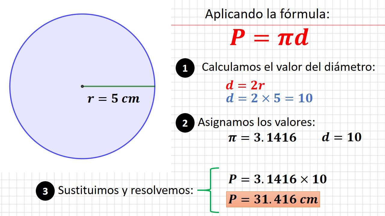 perímetro del circulo